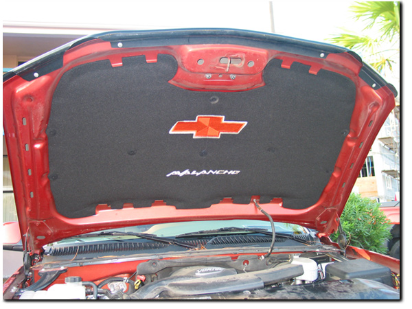 Customized Plates For Cars under hood insulator - Page 2 - Chevy Colorado & GMC Canyon